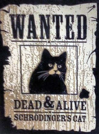 Wanted Schrödinger's Cat