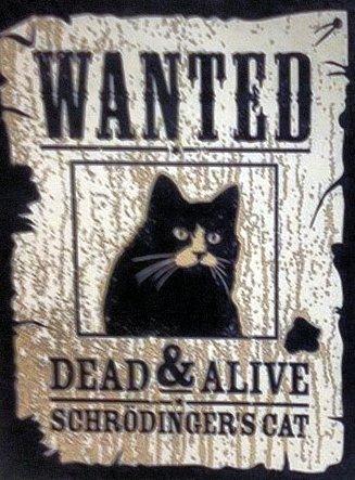 Wanted Schrödinger's Cat